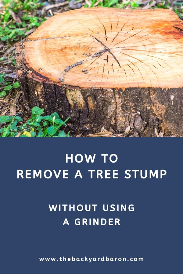 Ways to remove a tree stump without using a grinder (guide)