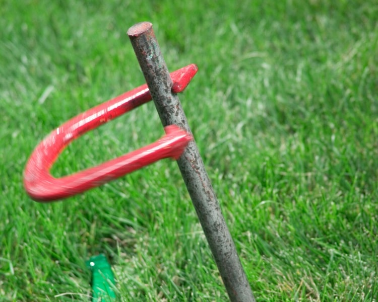 Horseshoe and stake on grass