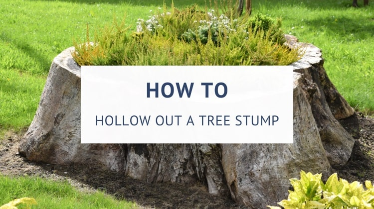 How to hollow out a tree stump