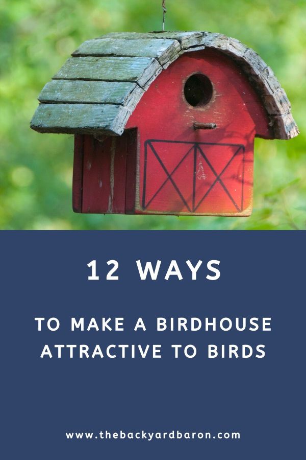 12 Ways to make a birdhouse more attractive to birds