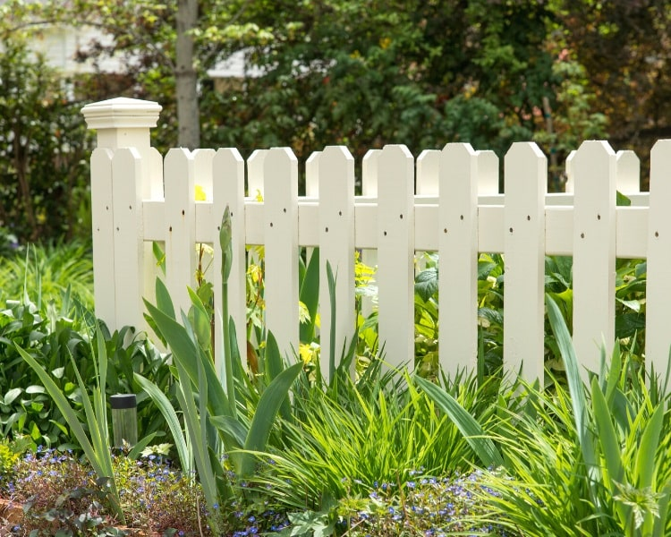 Backyard wooden fence