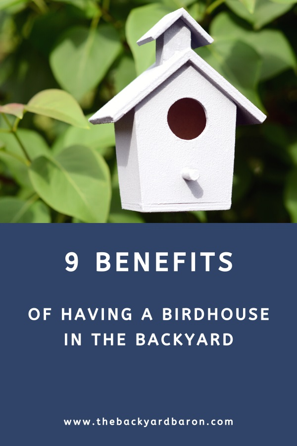 9 Benefits of birdhouses