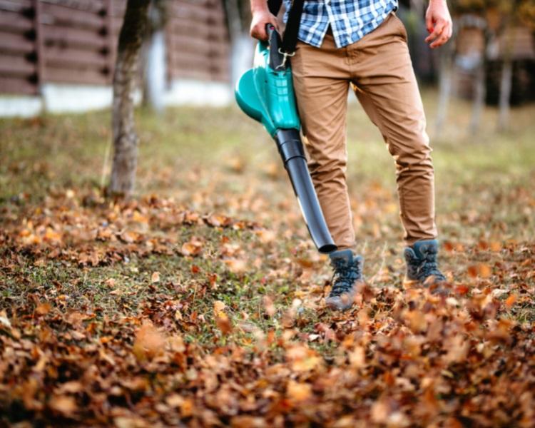 Handheld leaf blower
